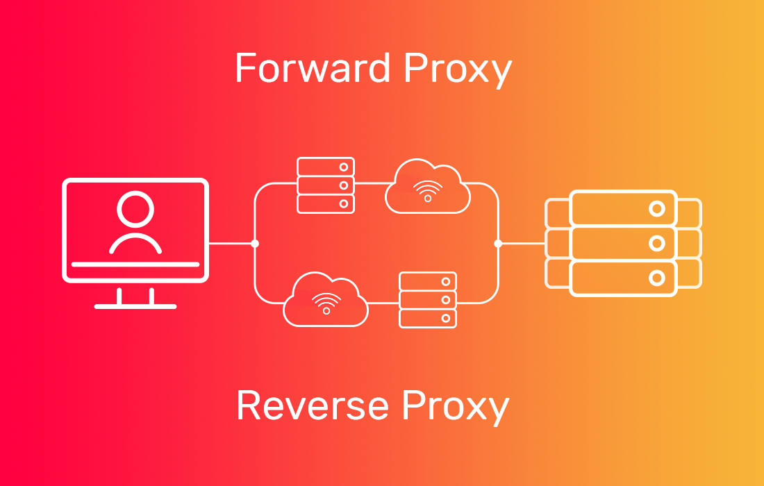 forward proxy - reverse proxy